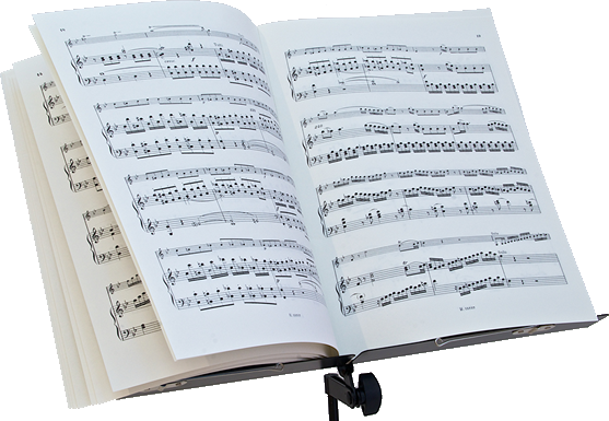 the book report sheet music Book report a paradiddle with an  download pdf sheet music the rudiment encyclopedia more hybrid rudiments  book mark book report book report (variations .